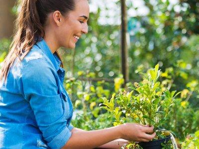 Haven er god for helbred og humøret